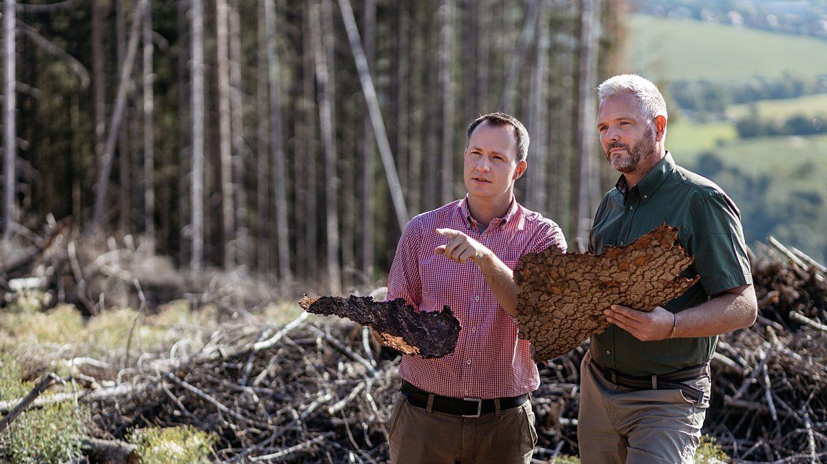 Wald retten - Umwelt schützen