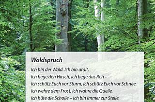 Screenshot 2020 06 23 Klima Und Wald Pdf
