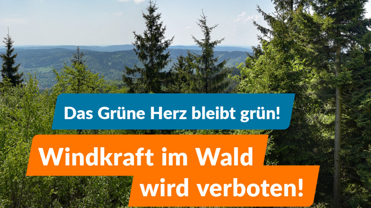 Verboten: Neue Windkraftanlagen im Wald